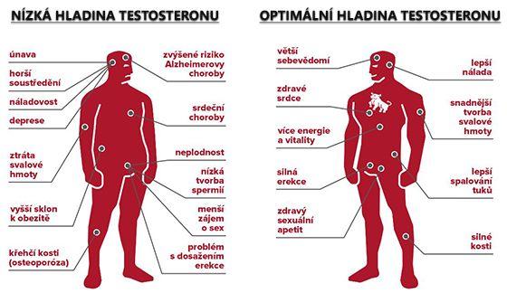 Nízká a vysoká hladina testosteronu